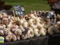 Garlic_Farm_Leckford_Farmers_Market_2019-10