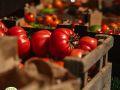 Tomato_Stall_Leckford_Farmers_Market_2019-19