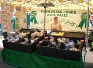 Winchester Market2
