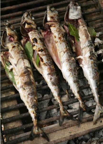 mackerel-barbecued-over-bay--gallery