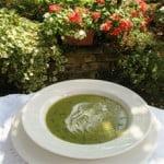 Lettuce, Cucumber & Pea Summer Soup