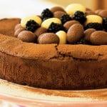Blackberry Chocolate Dessert Cake