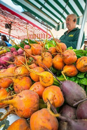 Hampshire Vegtables