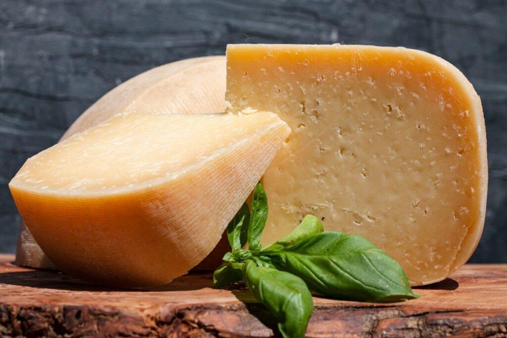 Hampshire Cheese